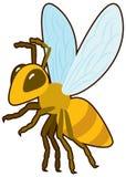 Beeldverhaal vectorhoney bee Stock Fotografie