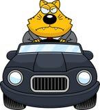 Beeldverhaal Vette Cat Driving Angry vector illustratie