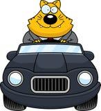 Beeldverhaal Vette Cat Driving Happy vector illustratie
