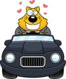 Beeldverhaal Vette Cat Driving Love stock illustratie