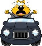Beeldverhaal Vette Cat Driving Panic royalty-vrije illustratie