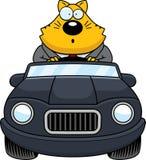 Beeldverhaal Vette Cat Driving Surprised royalty-vrije illustratie