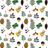 Beeldverhaal waterwall op witte achtergrond Natuurlijke materialen Bosprentbriefkaar Bosvruchten, bladeren, takken Naadloos patro royalty-vrije illustratie