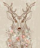 Beeldverhaalachtergrond met herten en bloemen Stock Afbeelding