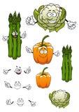 Beeldverhaalasperge, bloemkool en groene paprika Royalty-vrije Stock Afbeelding