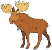 Beeldverhaaldier - Amerikaanse elanden - illustratie voor de kinderen Stock Fotografie