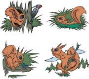 Beeldverhaaleekhoorns Stock Foto