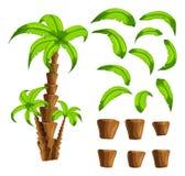 Beeldverhaalelementen de palmen op een witte achtergrond Reeks voorwerpen van een tropische boomboomstam en groene bladeren Royalty-vrije Stock Foto's