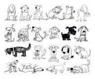 Beeldverhaalhond en kat, Vectorillustratie Royalty-vrije Stock Afbeelding