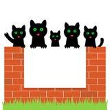 Beeldverhaalkatjes die achter document, vectorillustratie verbergen vector illustratie
