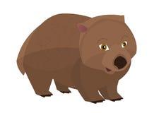 Beeldverhaalpapegaai - geïsoleerde wombat - Stock Foto