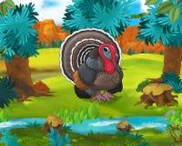 Beeldverhaalscène - de wilde dieren van Amerika - Turkije Stock Afbeelding