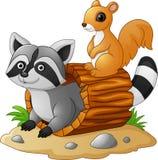 Beeldverhaalwasbeer en eekhoorn stock illustratie