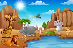 Beeldverhaalwilde dieren die in de woestijn leven stock illustratie