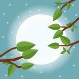 Beeldverhaalzonsondergang Vlakke vectorillustratie, bomen, blad, maan en Royalty-vrije Stock Fotografie