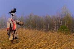 Beeltenis op het de lentegebied in de herfst van verwijderde niet rogge royalty-vrije stock afbeeldingen