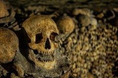 Beenderen, skeletten en schedels Stock Foto
