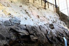Beenderen van de muurdino van het dinosaurus de Nationale Monument royalty-vrije stock fotografie