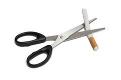Beendigtes Rauchen Lizenzfreie Stockfotos