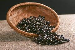 Beens del caffè Fotografia Stock