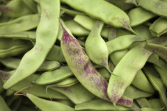 Beens Stock Images