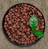 Beens y hojas del café Foto de archivo