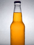 Beer. A cold bottle of beer royalty free stock images