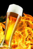 Beer Royalty Free Stock Images