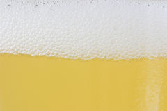 Beer. Close up of beer head royalty free stock photos