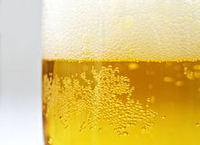 Beer. Close up of glass with beer stock photo