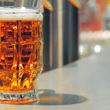 Beer. With glass in night club royalty free stock photos