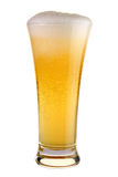 Beer. A glass of beer on white background Royalty Free Stock Photography