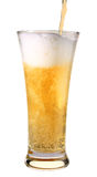 Beer. The beer pouring in glass Royalty Free Stock Photo