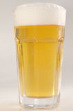 Beer. Fool glass of beer isolated Royalty Free Stock Photo