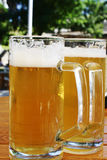 Beer. Two mugs of fresh beer on a table Royalty Free Stock Photography