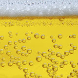 Beer. Close-up view of a frothy and bubbly beer Stock Photography