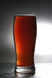 Beer. Cup of fresh tasty beer royalty free stock photos