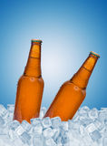 Beer. Bottles in ice over blue background Stock Images