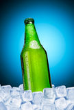 Beer. Green bottle of beer in ice on a blue background Royalty Free Stock Image