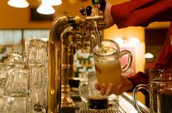 Free Beer Royalty Free Stock Photos - 2075888