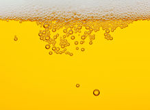 Beer. Closeup of a glass of beer with bubbles royalty free stock photo