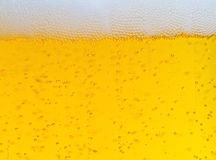 Beer. Close up of beer with bubbles and foam royalty free stock image
