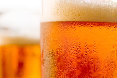 Beer. Czech draught beer with froth and bubbles in glass Stock Images