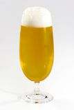 Beer. A glass of cold beer Royalty Free Stock Photos