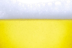 Beer. Closeup of fresh light beer with froth Royalty Free Stock Photography