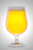 Beer. A Glass of Beer, freshly tapped Royalty Free Stock Photography