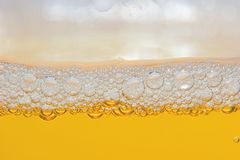 Beer. In a glass Stock Photography