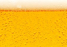 Beer. Close up of beer bubbles royalty free stock photos
