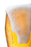 Beer. Fresh glass of pils beer with froth and condensed water pearls Stock Photography