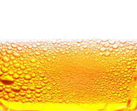 Beer. Foam is photographed close-up stock photo